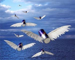 redbull-wings